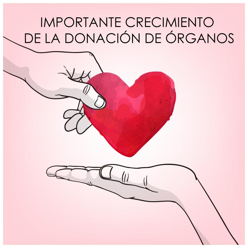 donacion-de-organos.jpg