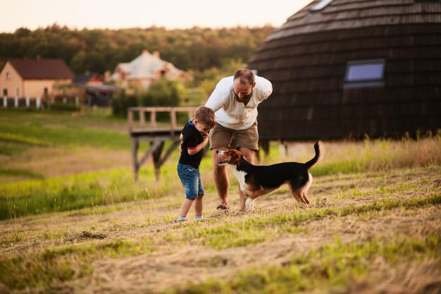 el-hombre-juega-con-su-hijo-y-un-perro-en-el-campo_8353-7738.jpg