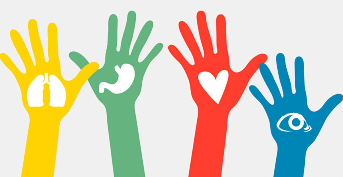 donacion_de_organos-e1558552605290-1200x621.jpg